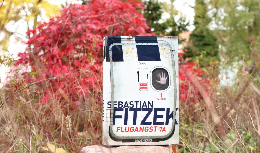 Sebastian_FItzek_Flugangst_(Ausblick)