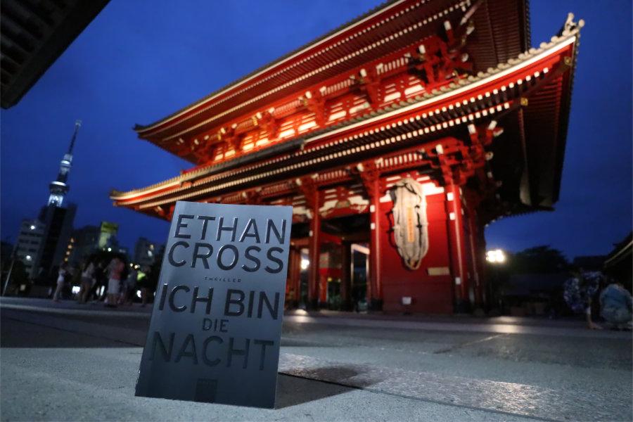 Ethan_Cross_Ich_bin_die_Nacht_(Resumee)
