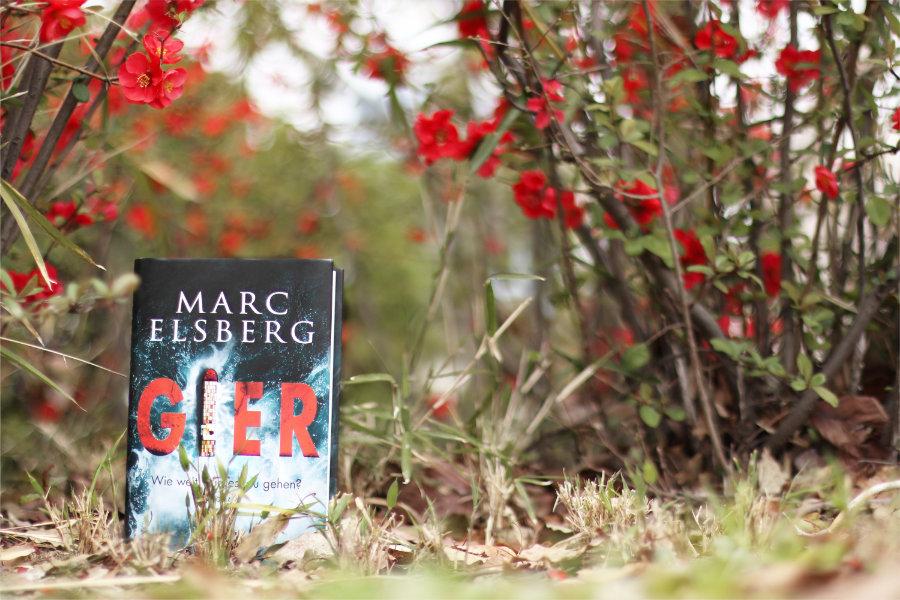 Marc_Elsberg_Gier_(Resumee)