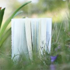 Lesefrei_Dinge_die_mich_manchmal_am_Lesen_hindern_(Vorschau)
