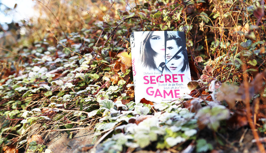 Stefanie_Hasse_Secret_Game_(Ausblick)