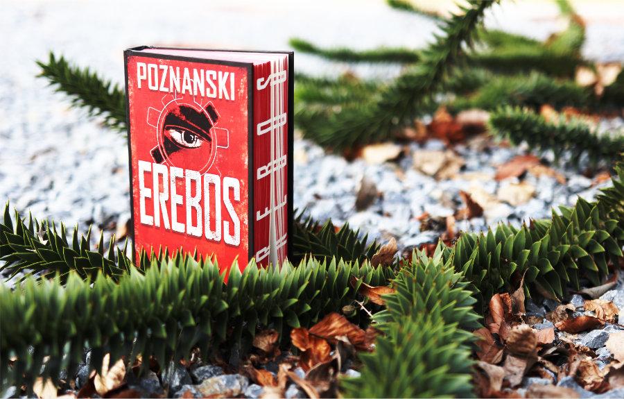Poznanski_Erebos_(Resumee)