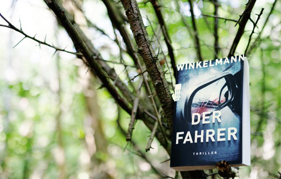 Andreas_Winkelmann_Der_Fahrer_(Ausblick)