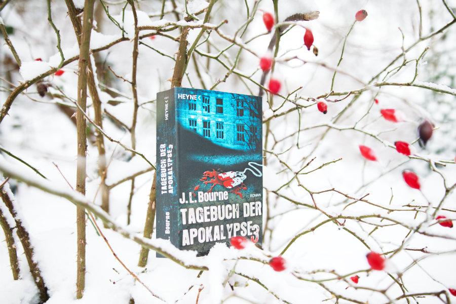JL_Bourne_Tagebuch_der_Apokalypse_3_(Resumee)
