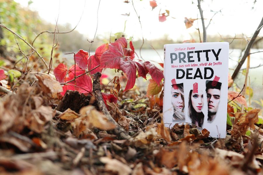 Stefanie_Hasse_Pretty_dead_(Ausblick)