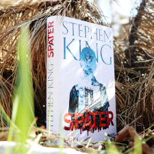 Stephen_King_Spaeter_(Resumee_Vorschau)