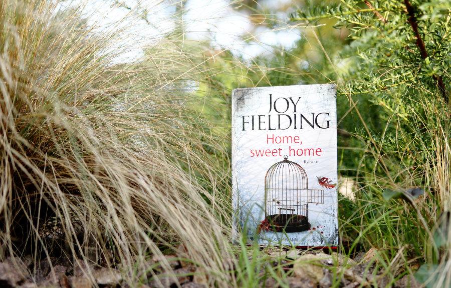 Joy_Fielding_Home_sweet_home_(Ausblick)
