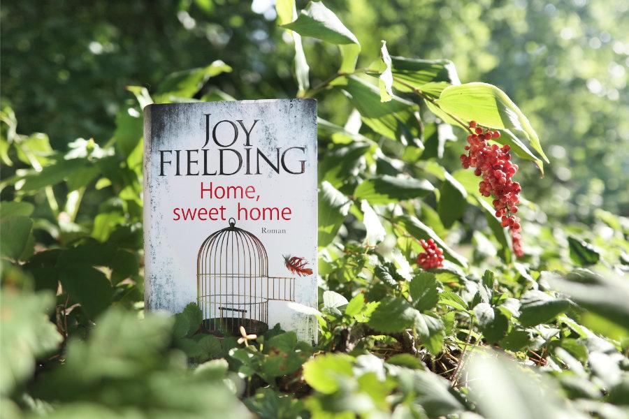 Joy_Fielding_Home_sweet_home_(Resumee)